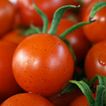 Asesoria financiera empresa de hortalizas